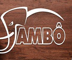 Lançamentos da Jambô na Bienal do Rio