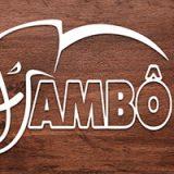 Quadrinhos e livros-jogos são os primeiros lançamentos de outubro da Jambô